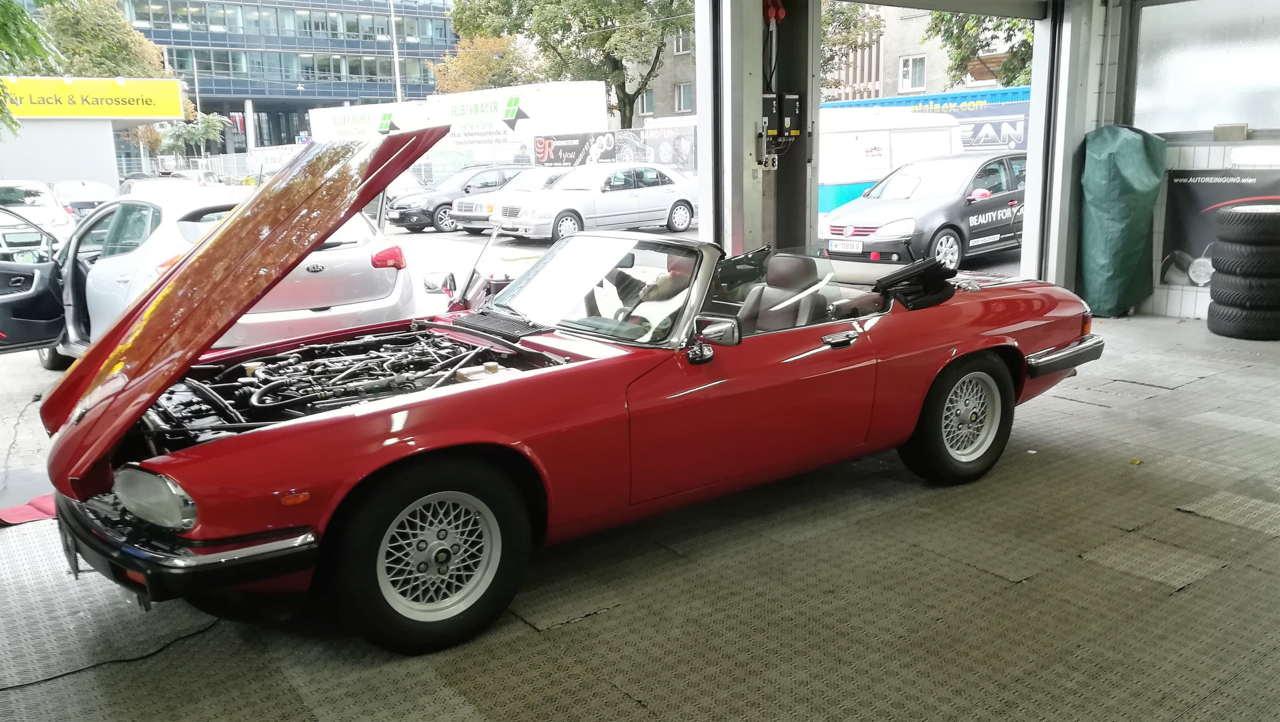 Bei dem Jaguar wurde auch der Motorraum gepflegt und geschützt.